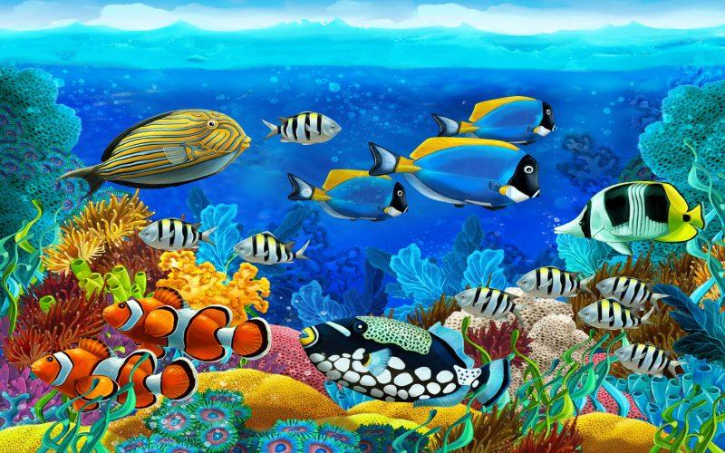 3D Ocean-Marine