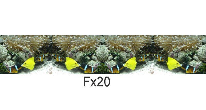 FX020