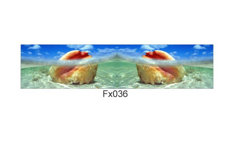 FX036 eDIT