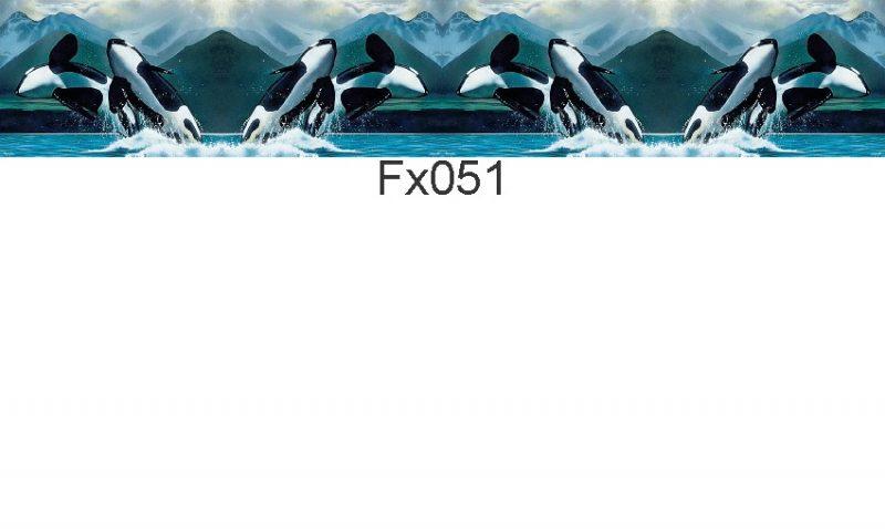 FX051