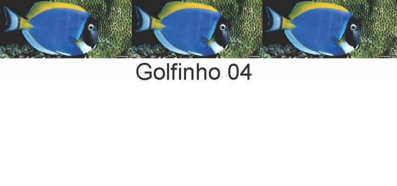 Golfinhos 04