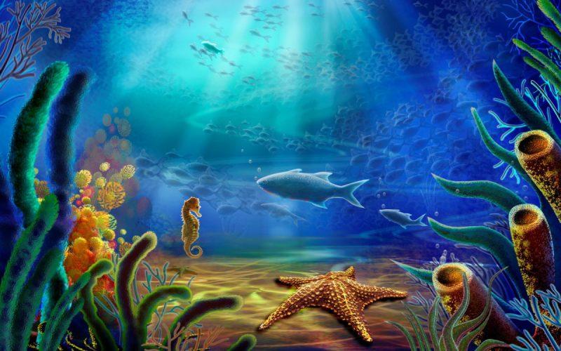 Desenho fundo do mar adesivo para fundo de piscina