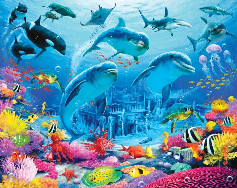 under-the-sea-adventures